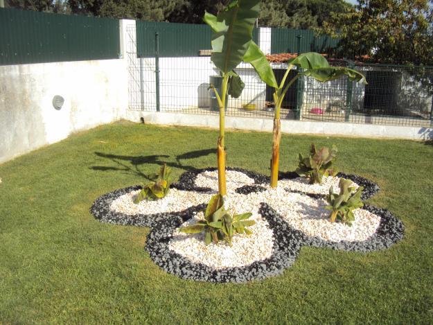 Como Decorar Jardins Com Pedras Passo A Passo