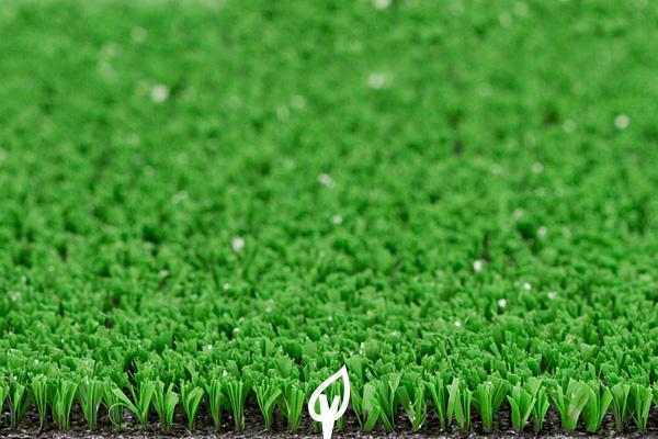 Qual a melhor grama para escolher?