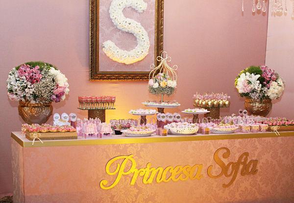 festa-princesa-8