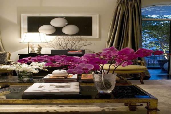 orquidea-para-decoracao